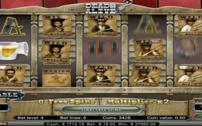 Biggest Dead or Alive Video Slot Win